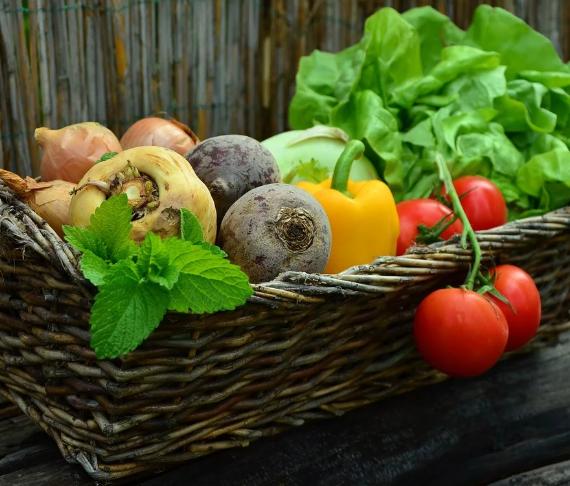 7 Gebote der gesunden Ernährung für Kinder