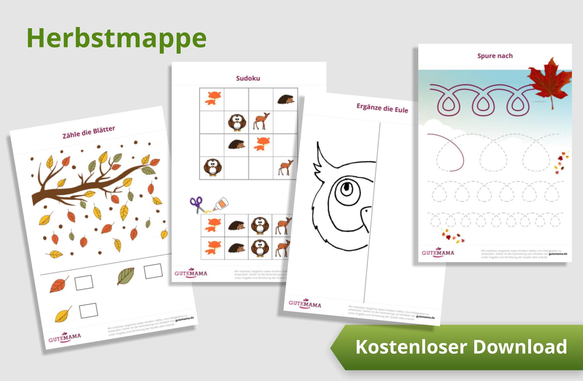 Eine Mappe mit 12 Arbeitsblättern zur gezielten und lustigen Schulvorbereitung im Kindergarten in h