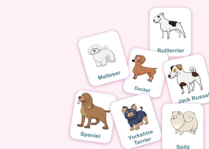 Hunderassen - Wortschatz und geistige Flexibilität