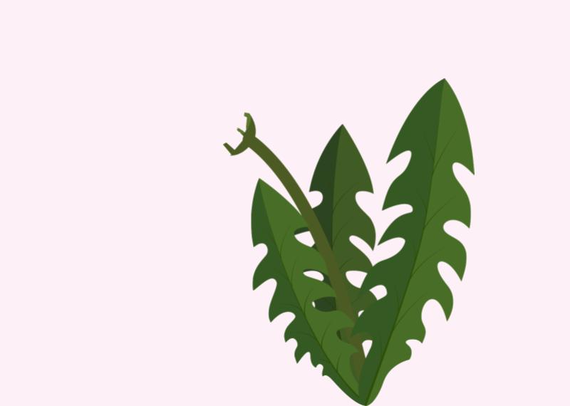 Löwenzahn - Vorlage zur kreativen Gestaltung